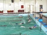 Петобойците тренират здраво на басейна в Езиковата