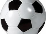 Четири отбора със заявка за десетия шампионат по минифутбол.Заявки се приемат до 30ти май
